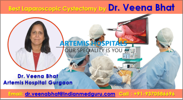 laparoscopic cystectomy cost in India, laparoscopic surgery ovarian cyst cost in india, ovary removal surgery cost in india, average cost of an ovarian cyst surgery, dr. veena bhat laparoscopic cystectomy surgeons, laparoscopic cystectomy surgeons fortis Hospital, laparoscopic cystectomy surgeons artemis hospital, best laparoscopic cystectomy hospital in India, artemis hospital gurgaon gynaecologist, dr. veena bhat Contact Number,  dr. veena bhat Email Address,  dr. veena bhat gynecologist obstetrician,